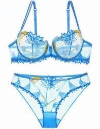 Embroidered Blue <b>Transparent Lace Bra &</b> Briefs