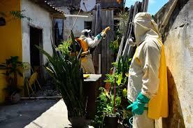 Resultado de imagem para Governo estuda multa para quem mantiver focos de Aedes aegypti