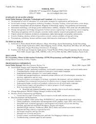 how to write an executive summary example for your proposal how to resume sample job summary sample of job description in resume how to write an executive summary