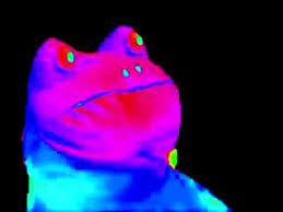 MLG Frog Meme - YouTube via Relatably.com