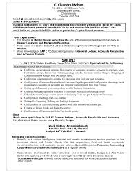 resume title samples resume title examples for fresher engineer how to make a resume headline how how to write resume headline