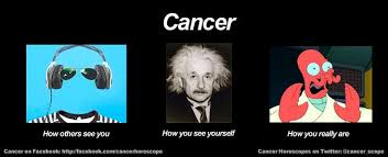 Funny Cancer Meme | Moon and Sun, Fire and Water | Pinterest ... via Relatably.com