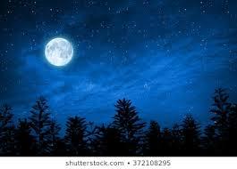 <b>Starry Sky Moon</b> Images, Stock Photos & Vectors | Shutterstock