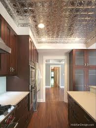 Kitchen Remodeling In Chicago Kitchen Remodeling Chicago Habitar Design