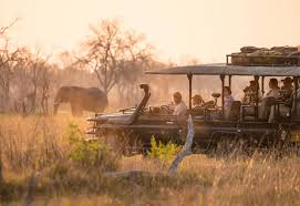 rhino africa jobs travel consultant apply online we are currently seeking a new crop of travel consultants to join rhino africa s diverse and talented international s team offering immediate vacancies