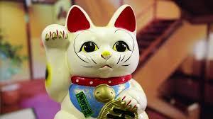 The <b>Lucky Cat</b> - YouTube