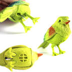 pictures of 2 parrots talking and singing dolls that harmonize
