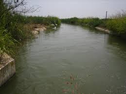 Αποτέλεσμα εικόνας για νερό,χωράφι φωτο