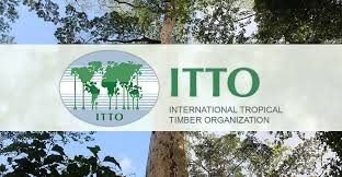 ITTO | The International <b>Tropical</b> Timber Organization