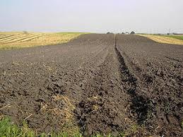 """Résultat de recherche d'images pour """"AGRICULTURE UKRAINE"""""""