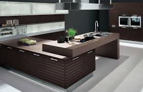 Small Picture Stunning Interior Design Ideas Kitchen Contemporary Decorating