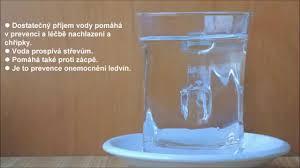 Výsledek obrázku pro Dušek ttéma o vodě