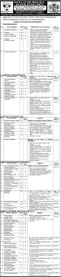punjab health department jobs for accounts medical it quaid e azam medical college jobs 2017 latest paperpk jobs 2017 punjab health department