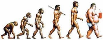Afbeeldingsresultaat voor obesitas cartoon