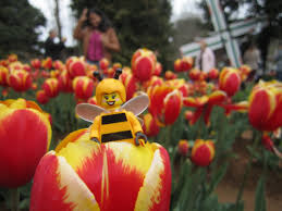 Image result for lego bumblebee girl
