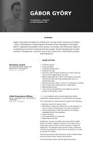 business coach resume samples coaching resume sample