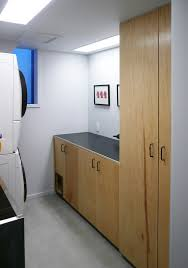 bright hidden litter box in laundry room midcentury bright modern laundry room