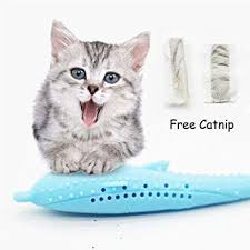 PanDaDa Cat Fish Shape Toothbrush With Catnip, <b>Pet</b> Eco-Friendly ...