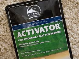 Image result for homemade beer yeast