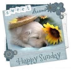 Happy Sunday SMS | 123 LOVE SMS via Relatably.com