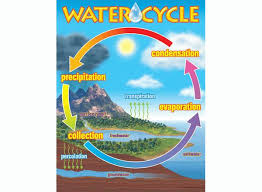 best images of easy water cycle diagrams   water cycle chart    water cycle chart