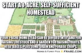 Start a 1-Acre, Self-Sufficient Homestead ... - Meme Generator ... via Relatably.com