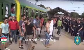 Resultado de imagen de falsos refugiados