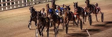 <b>Top Drivers</b>   The Raceway   Western Fair District