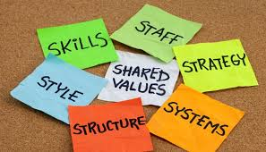 why we should consider both functionalist and interpretive views  why we should consider both functionalist and interpretive views of organisational culture