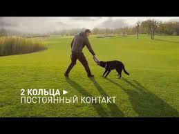 Тренировочный снаряд <b>Puller</b> (<b>Пуллер</b>) <b>MINI</b> для собак мелких ...