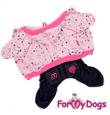 Купить <b>спортивный</b> или вязаный <b>костюм</b> для маленькой <b>собаки</b>