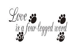Τελικά τι είναι η αγάπη;