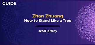 Zhan <b>Zhuang</b>: How to Cultivate Energy With Standing Meditation