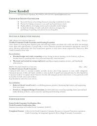 education counselor resume   sales   counselor   lewesmrsample resume  entry level counselor resume sle school