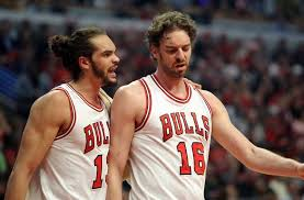 Image result for gasol noah bulls
