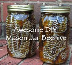 if you are ready to take the plunge into beekeeping check out this cool diy project from remove and replace by placing mason jars on your bee box build diy mason