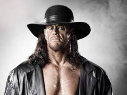 r reigns net worth income profile and salary 2017 the undertaker net worth income profile and salary