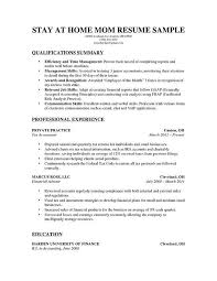Stay At Home Mom Resume Sample         aploon