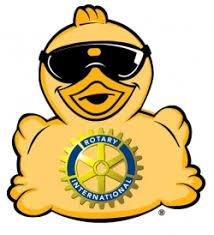 Afbeeldingsresultaat voor rotary duck