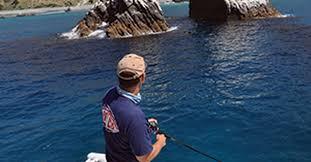 Catch Monster Calico Bass   Salt Water Sportsman
