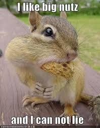 eat more nuts for long life