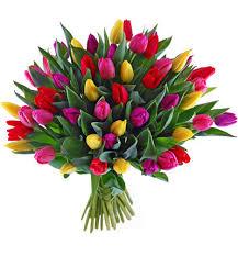 Znalezione obrazy dla zapytania bukiet kwiatów