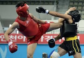 Image result for sanda beijing 2008