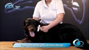 Фурминатор <b>Foolee Easee</b> для собак и кошек - купить в ЮниЗоо в ...