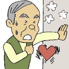 「心臓と機能」の画像検索結果