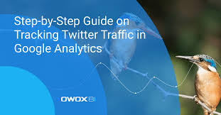 Step-by-Step Guide on Tracking Twitter <b>Traffic</b> in Google Analytics ...