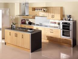 Modern Design Kitchen Cabinets Kitchen Cabinets Doors Modern Kitchen Ideas
