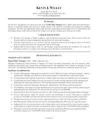 risk manager resume  risk management sample manager resume  risk    risk manager resume
