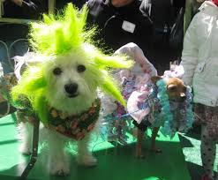 Image result for spring new york city parades