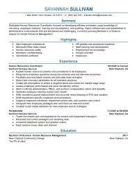 resume format for s executive doc create professional resume format for s executive doc resume sample 13 senior s executive resume career resume hr